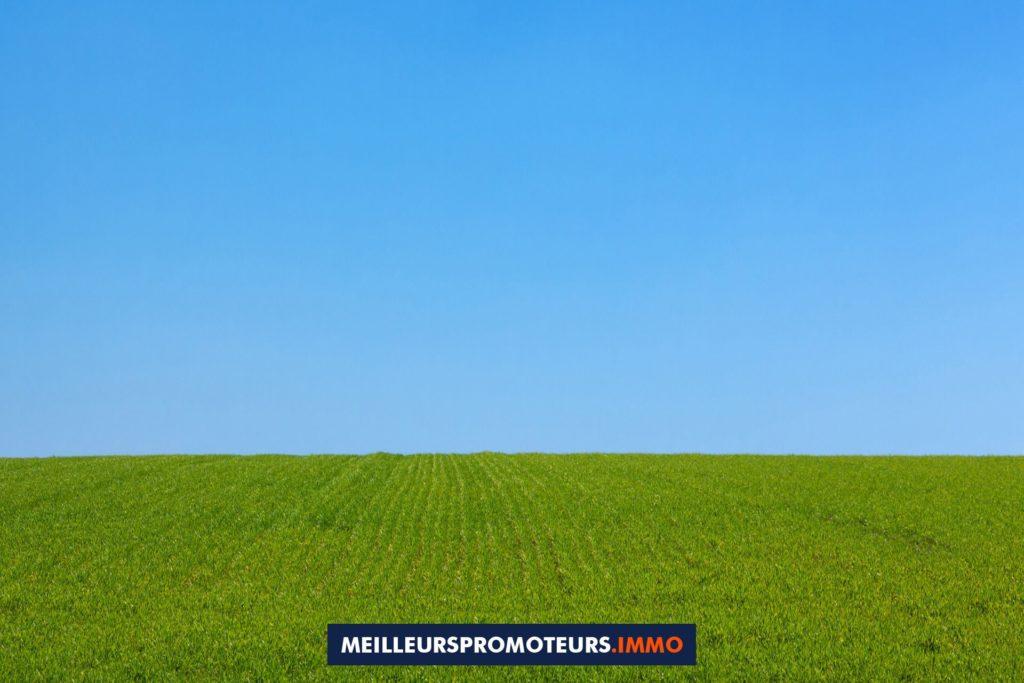 terrain vert ciel bleu