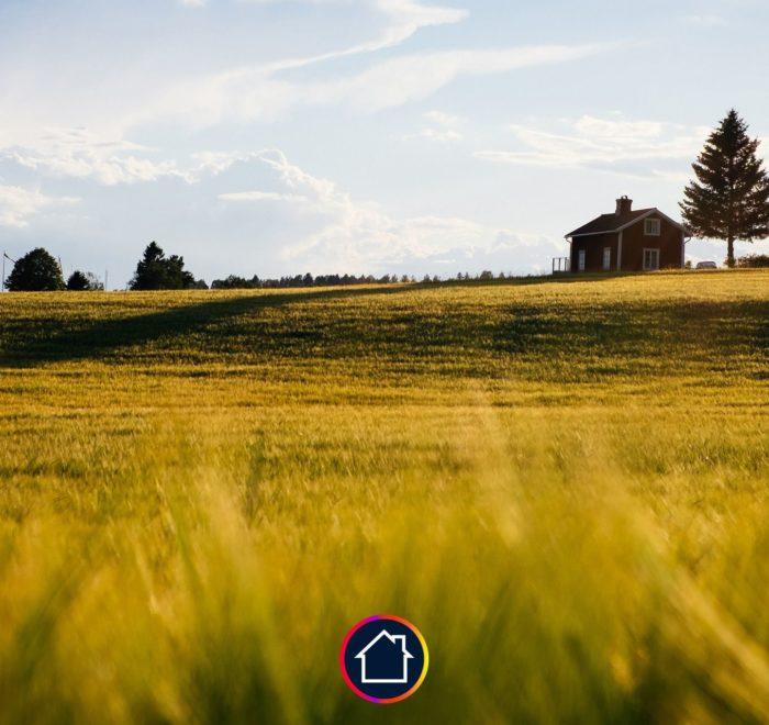 terrain herbe maison